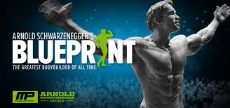Arnold blueprint for mass day 1 sixpacksmackdown malvernweather Gallery