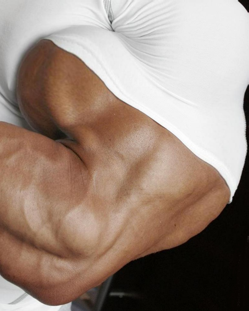 bicep muscles - photo #34